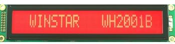 Módulo 20x1 a